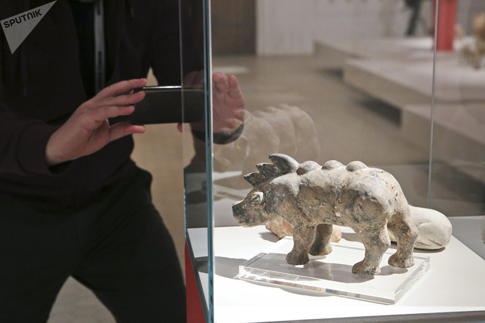 野猪。东汉(公元25年至220年)