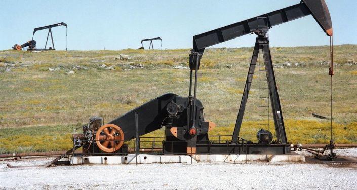 报告:世行下调未来两年油价预期至每桶67美元