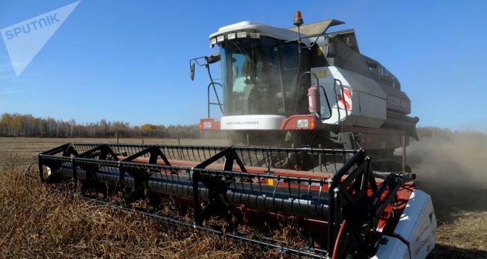 俄奔薩州政府:中國中糧集團或向該州工廠投資並供應設備