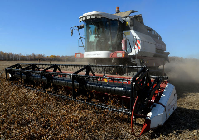 中国取消俄罗斯大豆进口限制将给俄农业发展注入活力