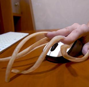 俄女子指甲长度破国家记录