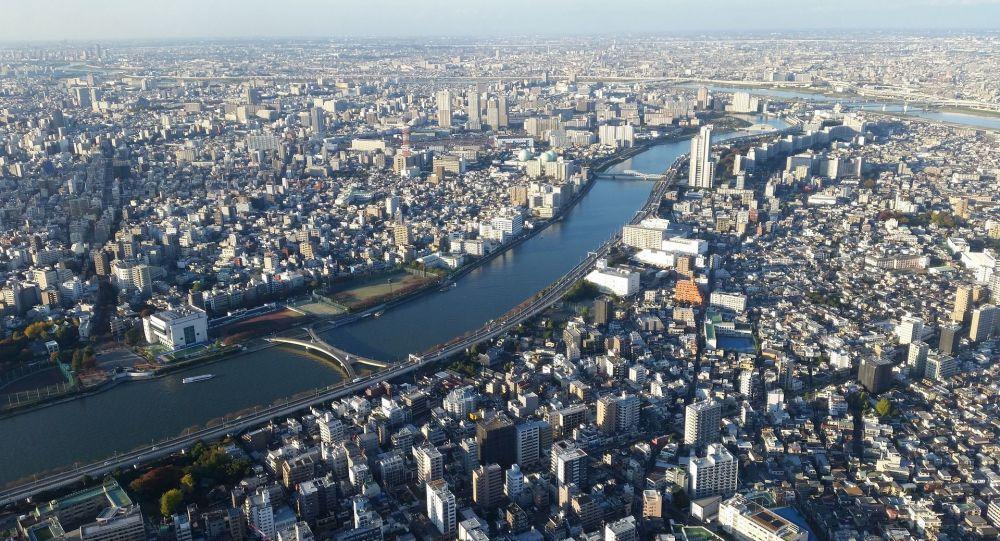 日本外相:東京期待普京今年6月訪日