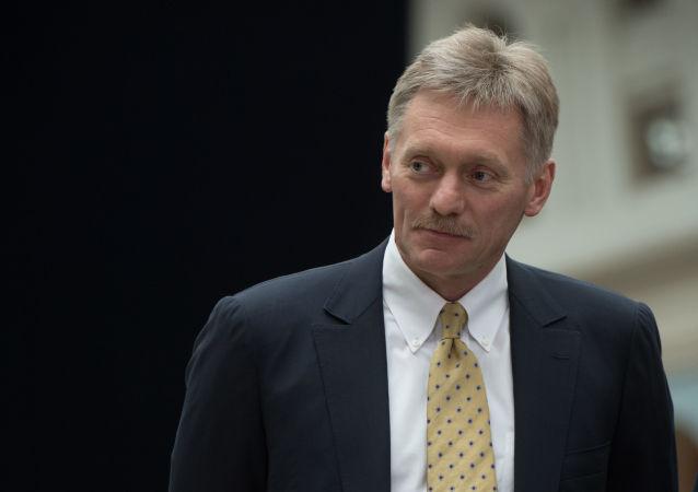 克宫:普京今年没有参加慕尼黑安全会议的安排