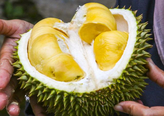 泰国牙医:榴莲是处理口臭的新方法