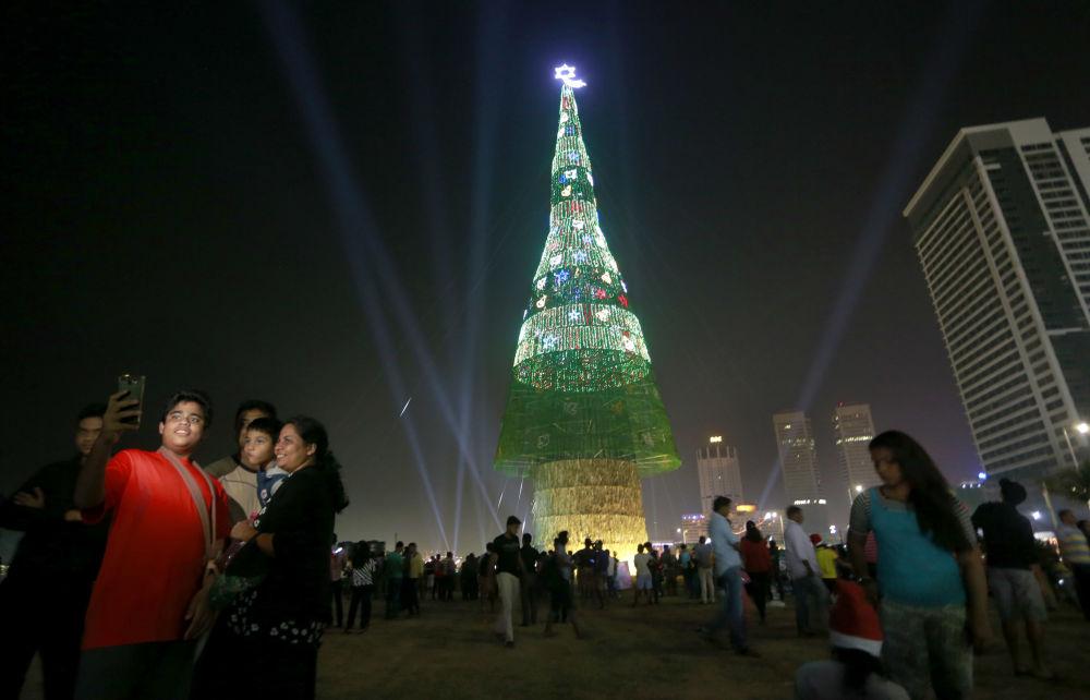 斯里蘭卡的人工聖誕樹。