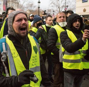 """巴黎禁止""""黄马甲""""在巴黎圣母院旁示威"""