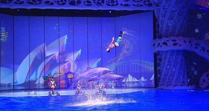莫斯科海族館內的新年表演
