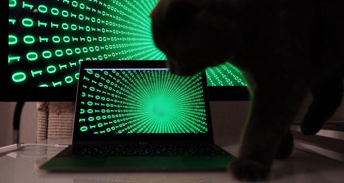 互联网开发者:互联网新发明或将来自俄罗斯或中国