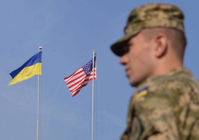 外媒:前美國駐烏大使稱華盛頓可能在2個月內向基輔提供武器