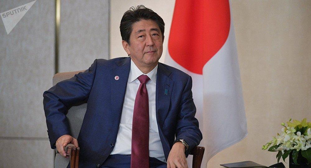 安倍:2019年日俄和平條約談判將達到高潮
