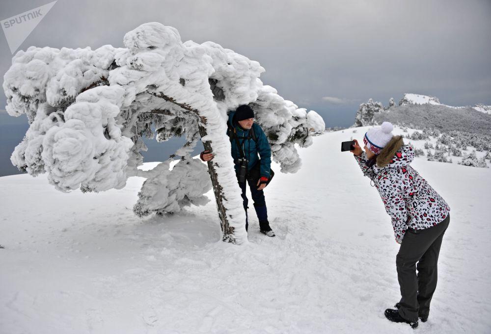 度假的人們在克里米亞艾-彼得高原上拍照