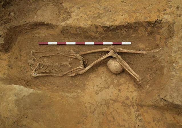 英格蘭現神秘墓地 頭骨被置於雙腿之間
