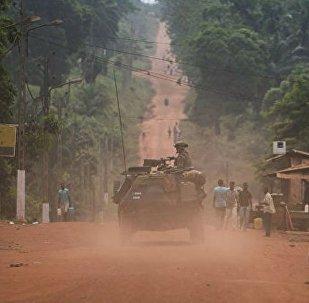 中非共和國防長:俄或將在中非部署軍事基地