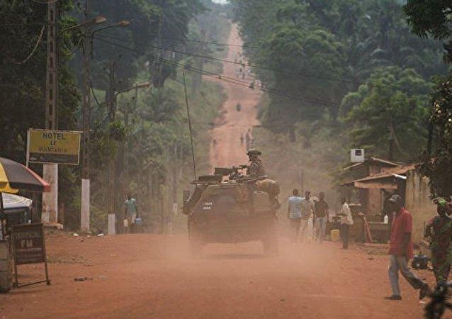 中非共和国防长:俄或将在中非部署军事基地