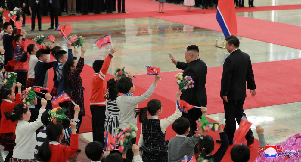 专家:金正恩新年首访中国意在向美国昭示朝方无核化的方向和意志