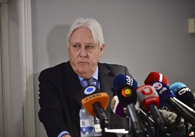 消息人士:联合国也门问题特使1月10日访问莫斯科