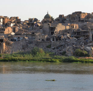 伊拉克高官:中国将在伊拉克重建工作中发挥重要作用
