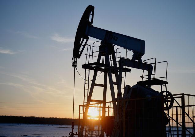 俄能源部長:俄1月將實現日均減產5萬桶原油