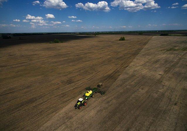 俄出口中心:2018年俄农产品出口额约为250亿美元