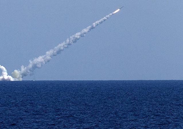 普京表示,俄罗斯暂停履行《中导条约》义务,回应美国相同举措