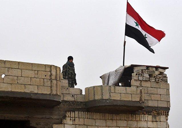 叙利亚国旗(图片资料)