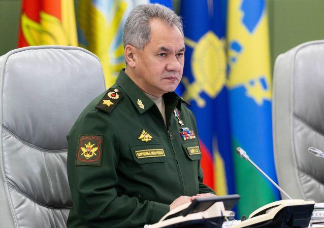 俄羅斯國防部長紹伊古