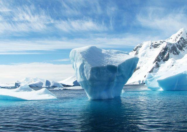 南极冰下湖现生物遗骸