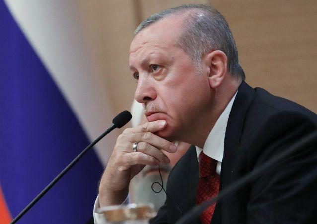 土耳其在叙利亚的出现是为了人道目的 而并非占领该国