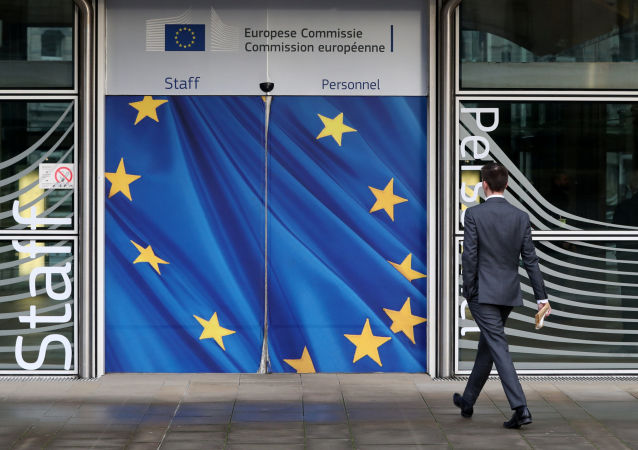 欧盟外长:第三届援助叙利亚国际捐助者会议将于3月在布鲁塞尔召开
