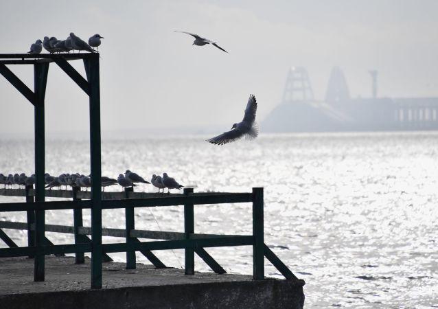 乌克兰估算刻赤海峡事件造成的损失