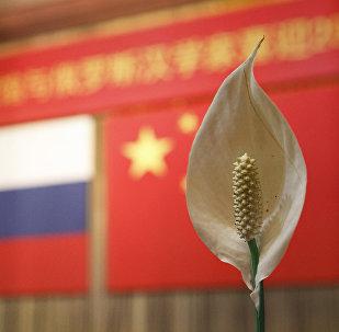必威体育准备向中国借鉴建设非资源型经济的经验