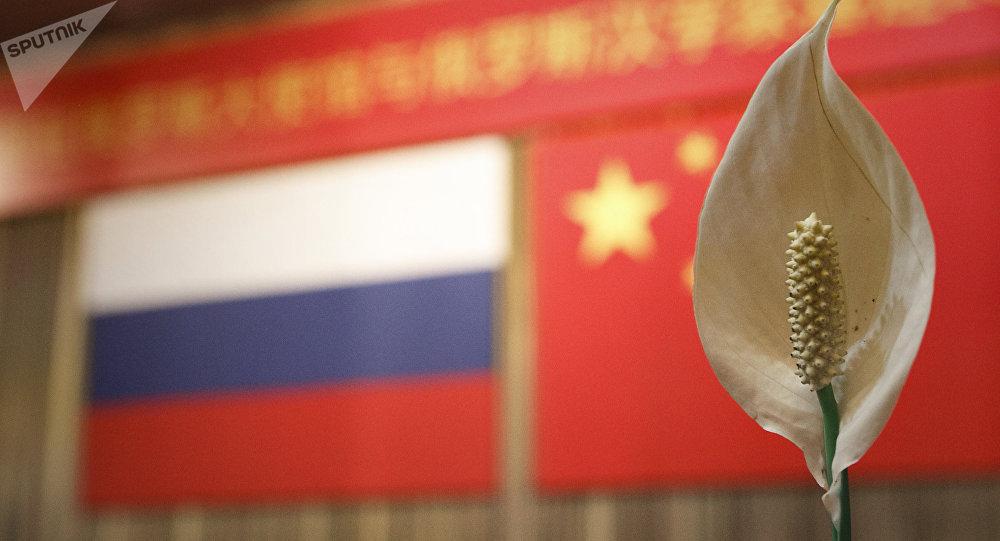 俄伏爾加河沿岸聯邦區130多名大學生將前往中國參加俄中青年論壇