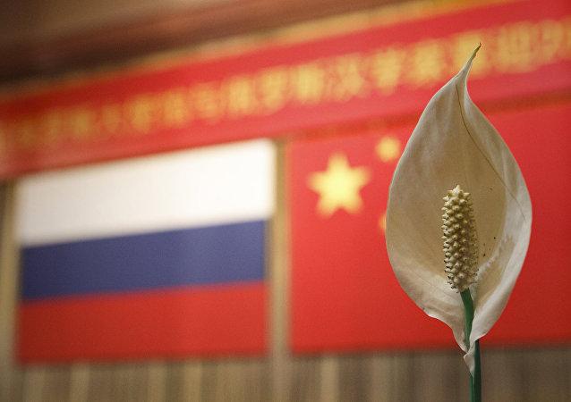 俄十多个地区的首脑将出席俄中建交70周年商务论坛