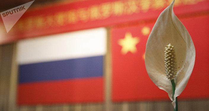 俄駐華大使:俄中在研究新建兩個地方合作機制
