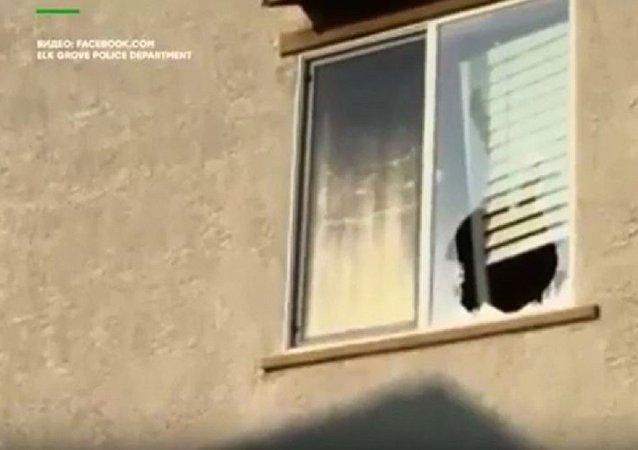 美國一隻火雞企圖搶劫