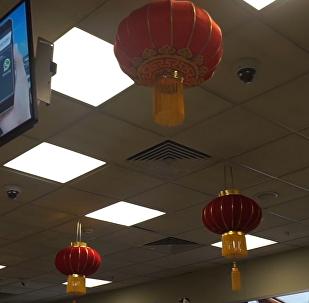 谢列梅捷沃国际机场喜迎中国年