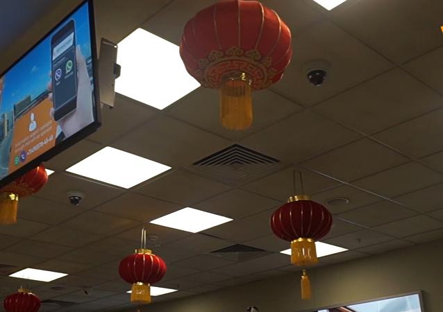 謝列梅捷沃國際機場喜迎中國年