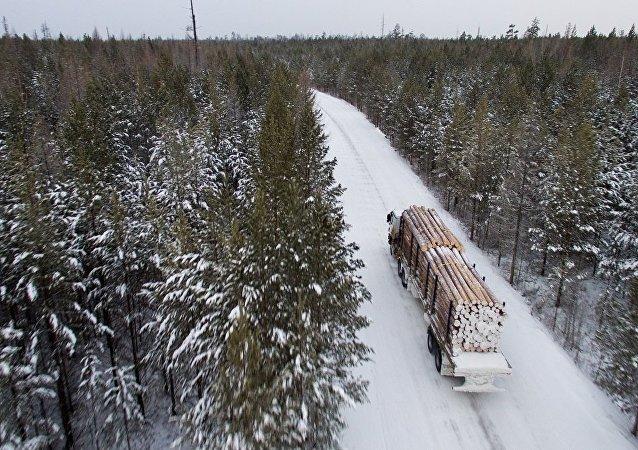木材運輸車