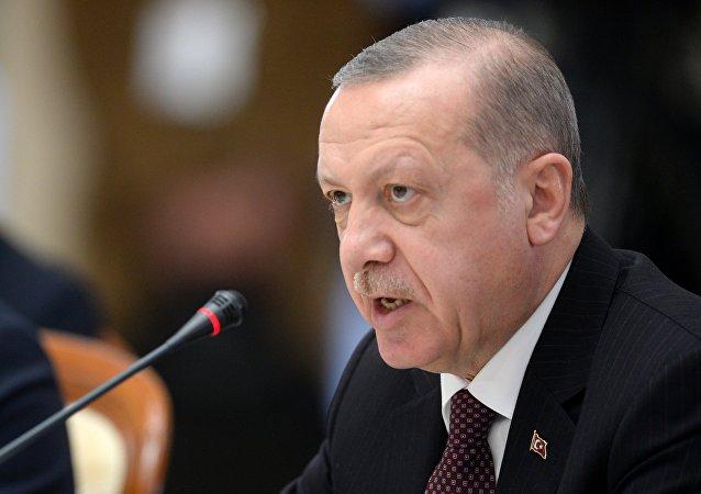 土耳其总统:特朗普了解土耳其部署俄S-400的动机