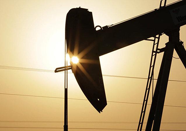 俄能源部長與阿布扎比國家石油公司總裁就能源合作進行討論