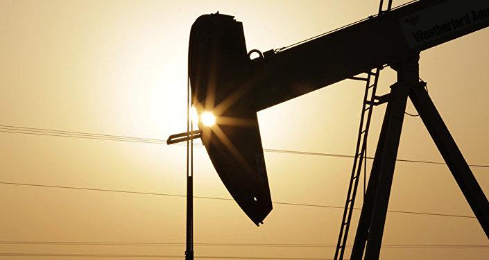 中石油:中国在鄂尔多斯盆地发现10亿吨级大油田
