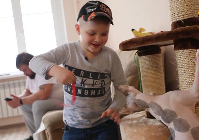 6岁小男孩帮150只动物找到新家