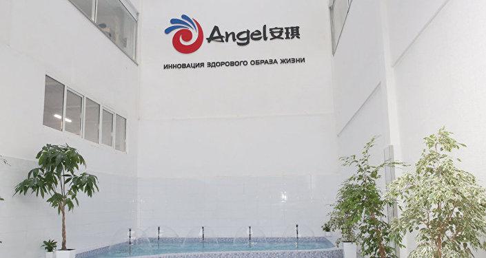 中國安琪酵母俄羅斯工廠正式投產