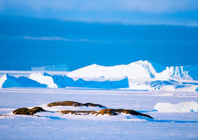 專家:南極氣溫零上天數或增加一倍達130天