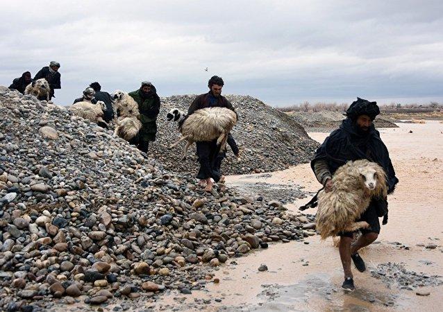 聯合國:阿富汗遭遇洪災超過12萬人需要人道援助