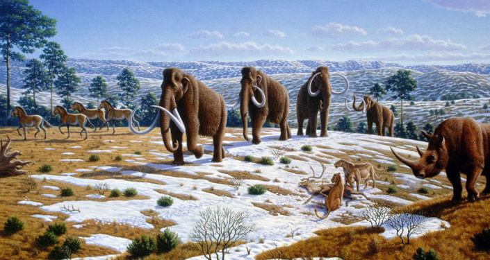 俄日科学家正努力试图复活猛犸象