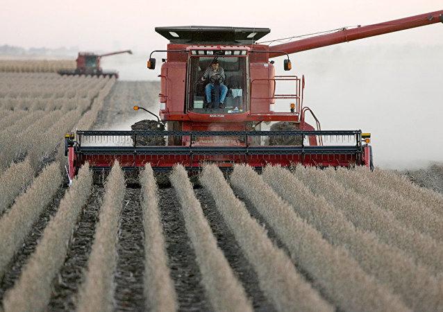 中國外交部: 農產品貿易是中美兩國需要討論的重要問題