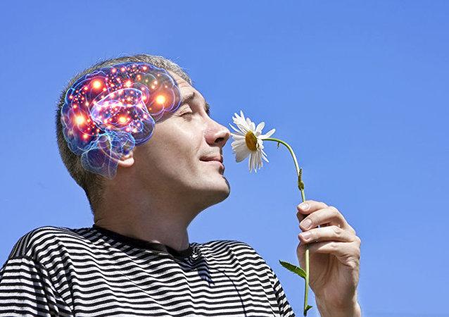 莫斯科州發現一名男子只有半個大腦