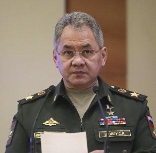 俄国防部长绍伊古