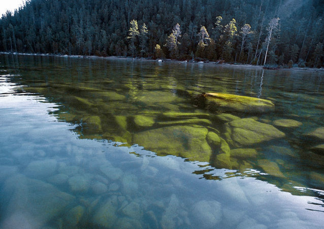 俄羅斯自然保護區
